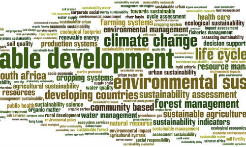 CECAN Seminar: Evaluating Sustainability – Is It Possible? A Case for Focusing on Evaluating Decision-Making for Sustainable Development