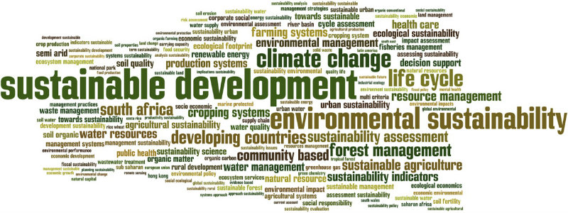 """""""Evaluating sustainability – is it possible? A case for focusing on evaluating decision-making for sustainable development."""""""