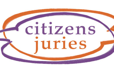 CECAN Webinar: Citizens' Juries: How Public Policy Should be Made?