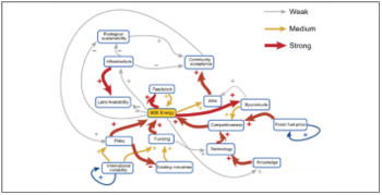 Participatory Systems Mapping